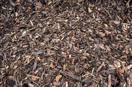 Ornamental Bark 10 Cube Minimum Bulk Order
